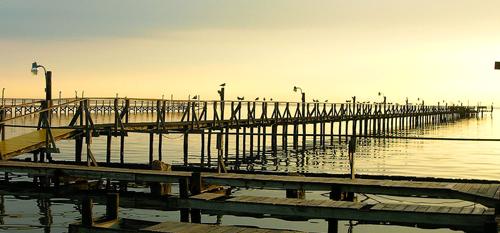 Port Aransas Proposal - April 19th 2009